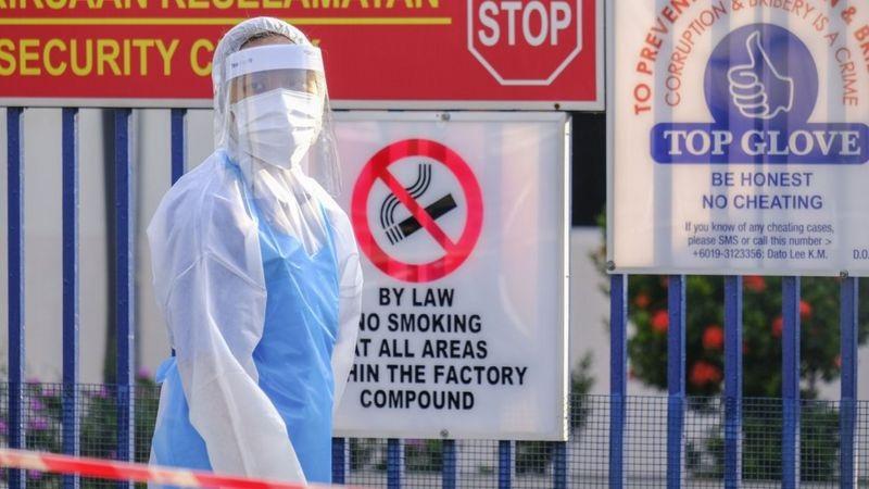 Covid-19: World's top latex glove maker shuts factories