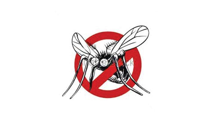 440 dengue cases this month