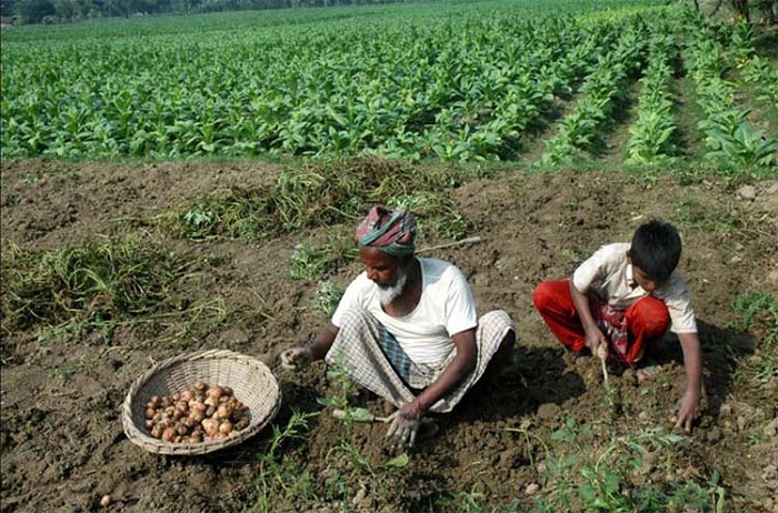 Country attains food security