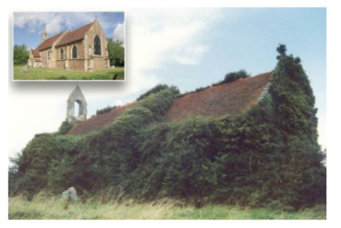 Church that was 'essentially a bush' looks unrecognisable after dramatic transformation