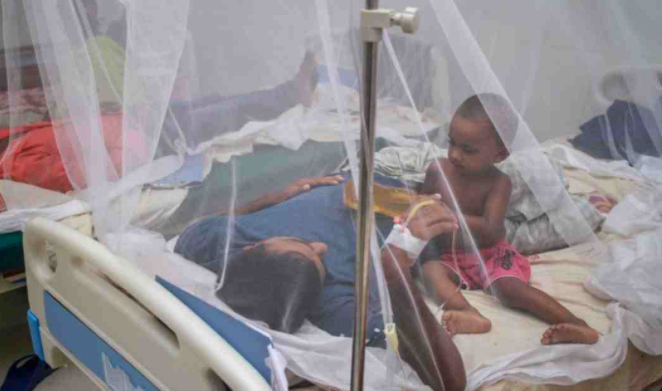 20 new patients hospitalised amid surge in dengue cases