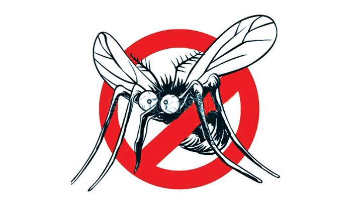 13 diagnosed with dengue in 24 hours