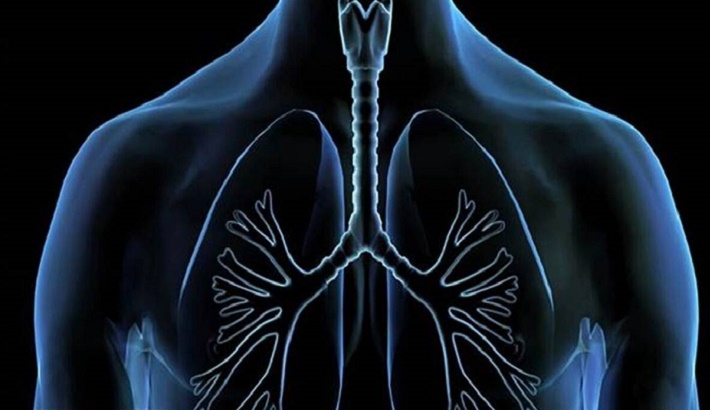 Most lungs recover well after COVID-19, says study