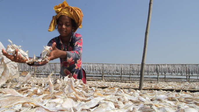 Experts for recognising child labour in dried fish sector as hazardous work