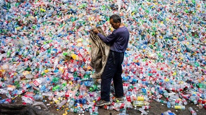 China biodegradable plastics 'failing to solve pollution crisis'