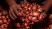 India lifts ban on onion export