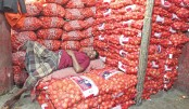 Onion price sees sharp fall as Indian variety hits market