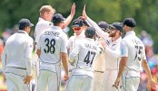 New Zealand rise to top