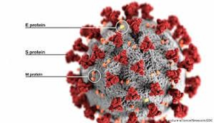 Coronavirus: COVID-19 is likely to affect these six organs