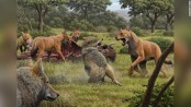 Analysis of ancient DNA reveals details about the dire wolf, inspiration for 'Game of Thrones' creature