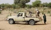 At least 48 killed, 97 injured in militia attack in Sudan's West Darfur State