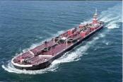 Four die as dry cargo ship sinks in Black Sea off Turkey