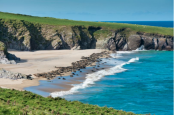 You can get paid to live on a remote Irish island with its own seal colony