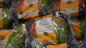 UK supermarkets caught in plastic packaging: study