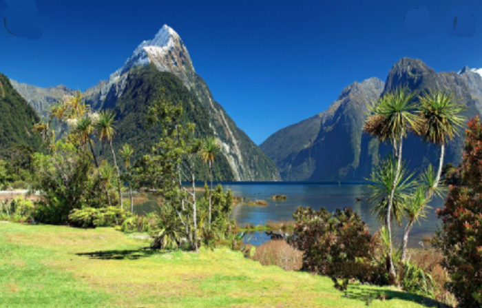 New Zealand's borders may stay shut for most of the year