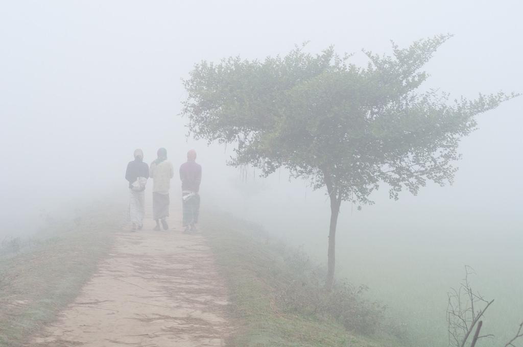 Kurigram shivers as mercury falls to 5.5°C