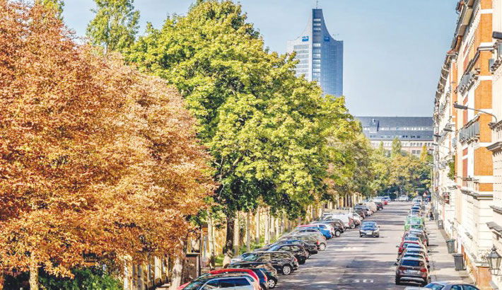 Street trees close to home may reduce the risk of depression