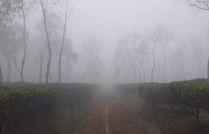 Cold wave grips northern region; lowest temperature recorded in Srimangal