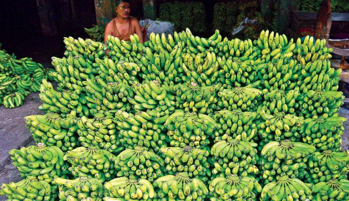A trader displays bananas at a wholesale shop