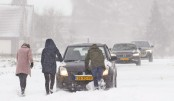 Dutch hit by first snowstorm in 10 yrs as Europe shivers