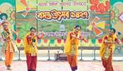 Celebrating Pahela Falgun