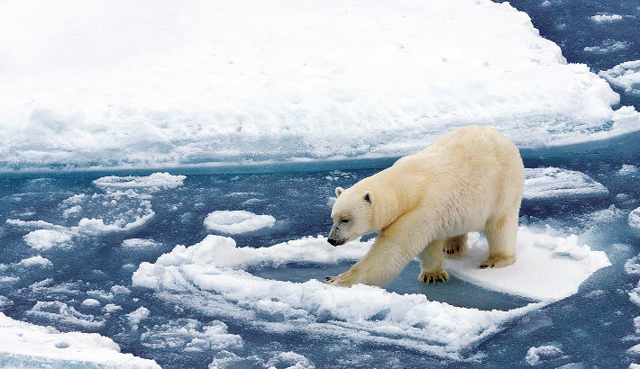 'Climate change a grave threat to world peace'