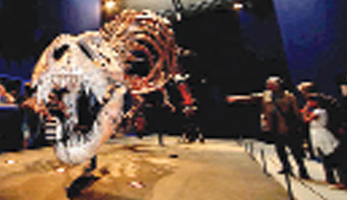 'Teenage T-Rexes edged out smaller dinosaur species'