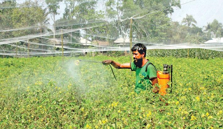 A farmer is spraying fungicide