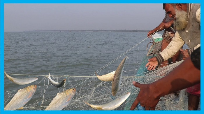 60-day ban on fishing in Meghna, Padma begins