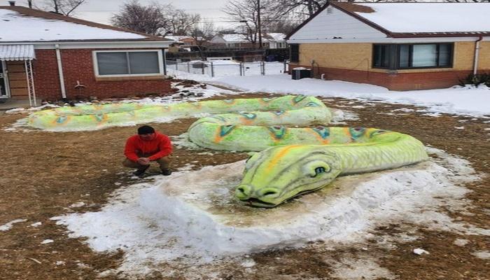 Denver family wows neighbourhood with snow art