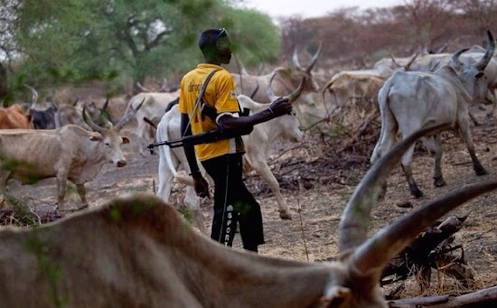 Gunmen kill 16 in northwest Nigeria