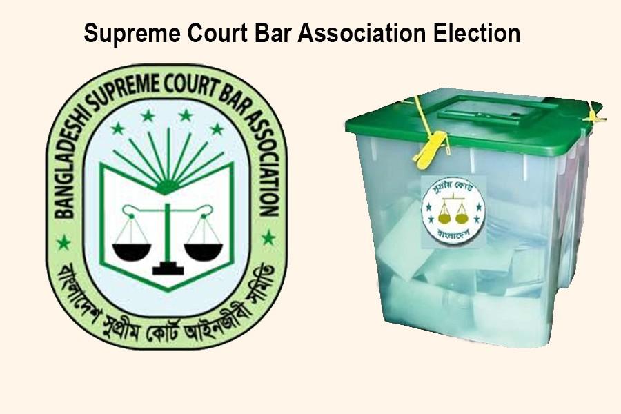 SC Bar Association election kicks off