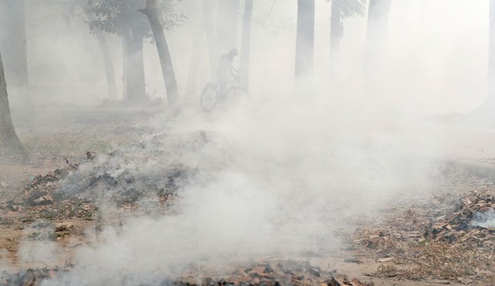 Clouds of smoke are billowing out of dried leaves being burnt