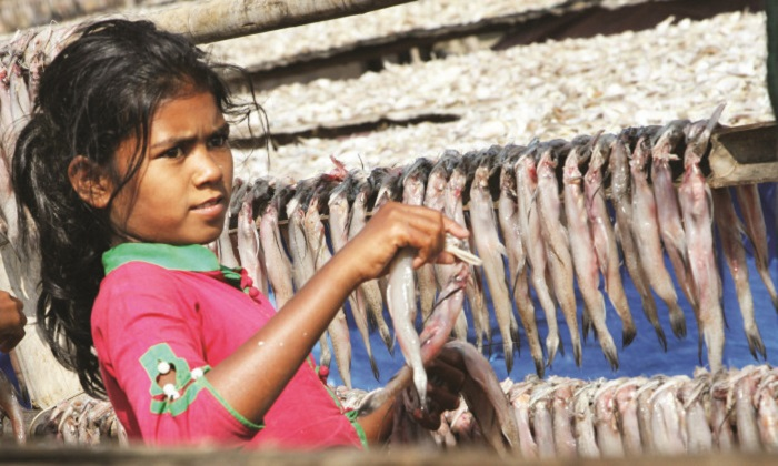 Curse of child labour is on wane on Dublar Char