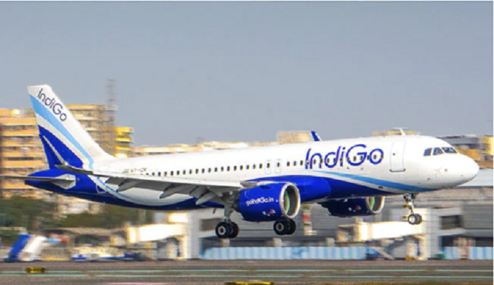 Baby girl born mid-air on IndiGo flight with help of cabin crew, doctor