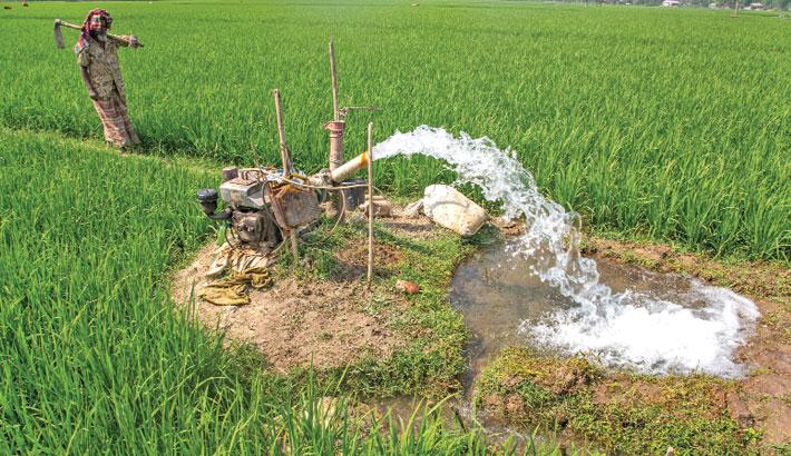 Farmers irrigate their Boro paddy field through a shallow tube-well at Radhanagar village