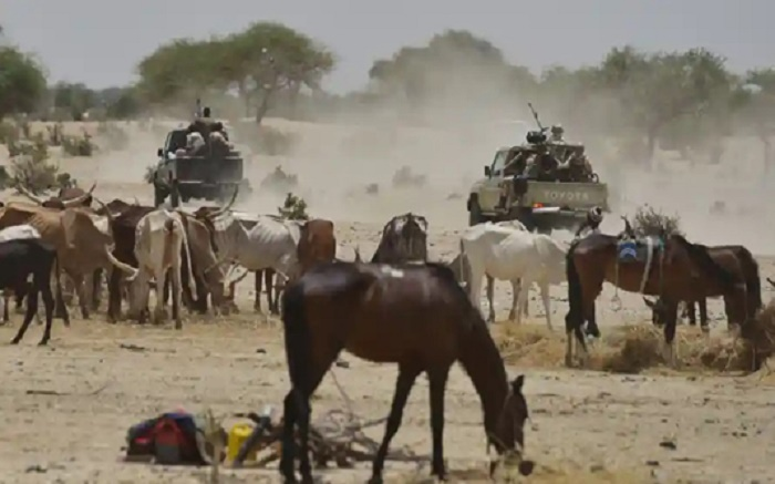 Thirteen killed in western Niger attacks
