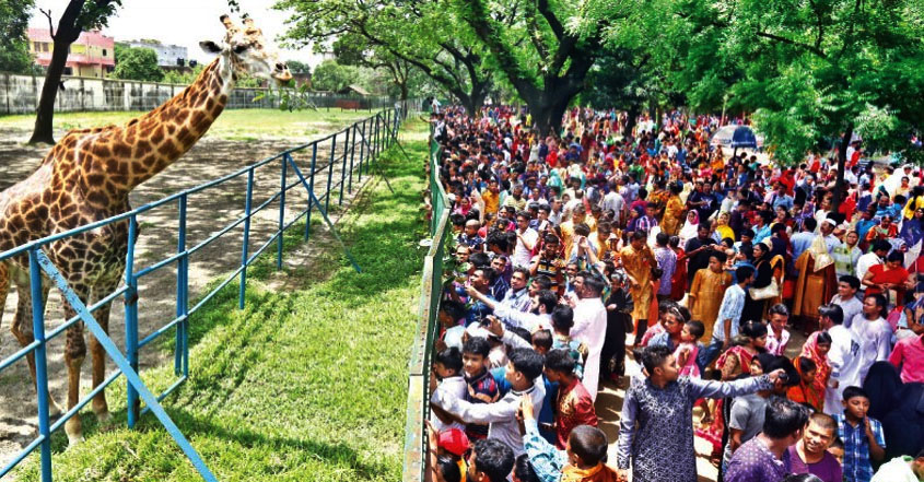 Govt shuts National zoo, Rangpur zoo to limit coronavirus spread