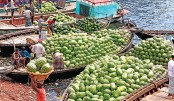 Demand for watermelon high as temperature rises