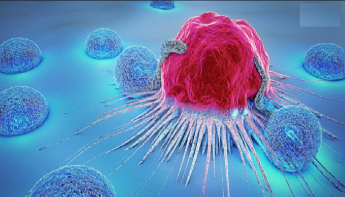 Cancer dreads all, still early diagnosis enhances survival rate