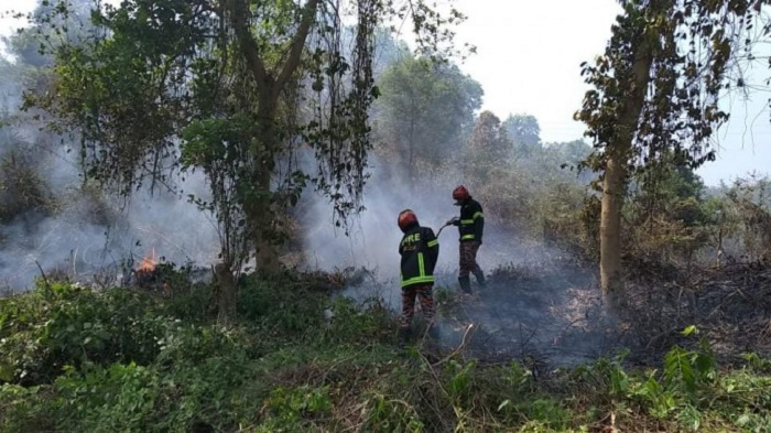 Lawachhara forest fire under control after 2 hours