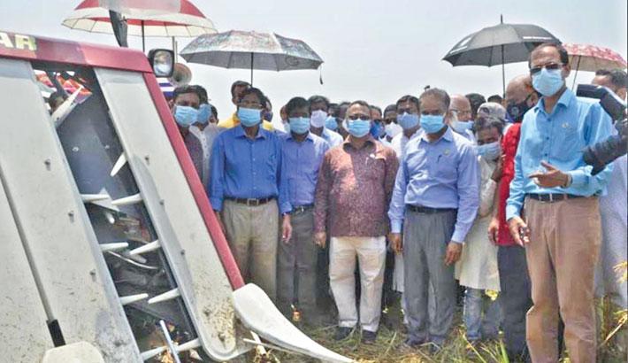 Inaugurates Boro paddy harvesting