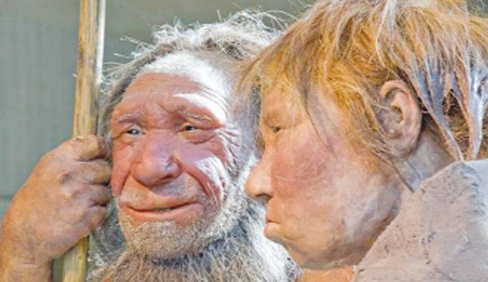 'Creative' genes gave Homo sapiens edge over Neanderthals