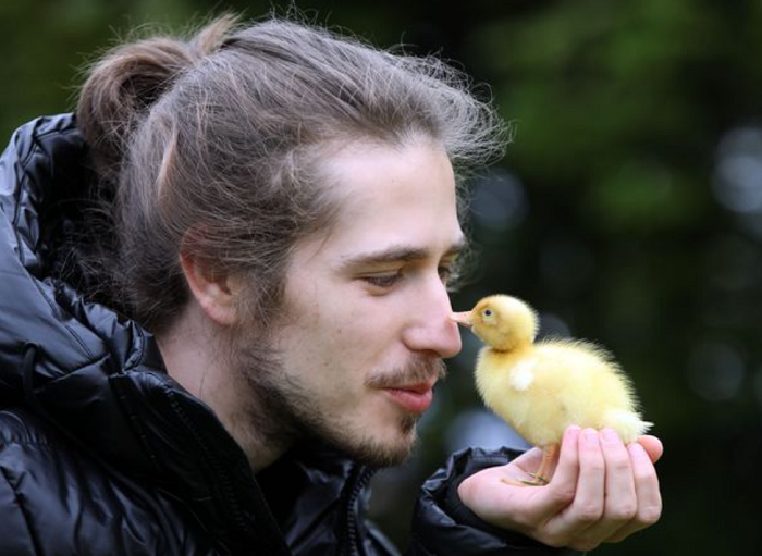 Man hatches duckling from Waitrose egg after being inspired by videos on TikTok