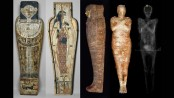 First pregnant Egyptian mummy surprises researchers