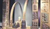 Germany to return looted Benin Bronzes to Nigeria