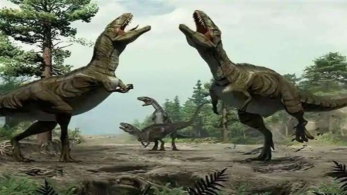 100 million-year-old bones of sauropod dinosaurs discovered in India's Meghalaya
