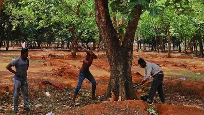 Writ petition filed against tree cutting at Suhrawardy Udyan