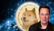 Cryptocurrency: Musk's SpaceX to launch dogecoin moon mission