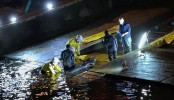 Rescue operation to help whale stranded in Thames